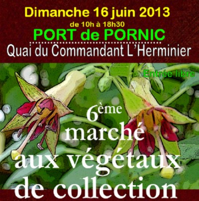 16/06/2013 6�me March� aux V�g�taux de Collection � Pornic
